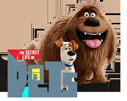Secret Life of Pets - Mascotas